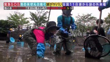 210214 Kinkyu SOS! Ike no Mizu Zenbu Nuku Dai Sakusen – AKB48 Oya Shizuka, Yamauchi Mizuki – HD.mp4-00001
