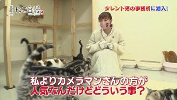 210217 Neko Jiman – ex-AKB48 Takahashi Minami – HD.mp4-00001