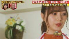 210513 THE Toppa File – Hinatazaka46 Kawata Hina, Watanabe Miho & Nogizaka46 Umezawa Minami – HD.mp4-00011