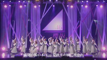 210514 Sakurazaka46 2nd Single 'BAN' Delivery Mini Live – HD.mp4-00008